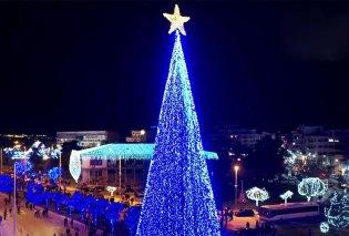 Τι ωραία! Ο Βόλος φέτος έχει το ψηλότερο χριστουγεννιάτικο δέντρο στην Ελλάδα με 1 εκατομμύριο λαμπιόνια (Φωτό & Βίντεο) - Κυρίως Φωτογραφία - Gallery - Video