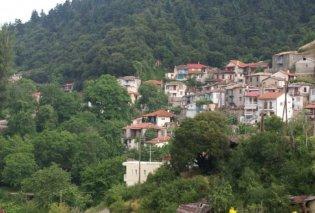 Καστριώτισσα Φωκίδας: Αρχοντικό χωριό, καθαρός αέρας, πυκνά έλατα & νερά – Ιδανικό για τους λάτρεις της φύσης - Βίντεο - Κυρίως Φωτογραφία - Gallery - Video