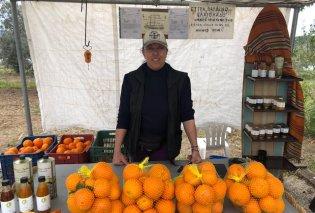 Top Woman η Λιάνα Οικονόμου & τα πιο ζουμερά πορτοκάλια Μέρλιν της Ελλάδας – Η συμμαθήτριά μου έγινε αγρότισσα & ό,τι πιάνει γίνεται χρυσός - Κυρίως Φωτογραφία - Gallery - Video
