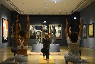Good News: Η Yoga στο μουσείο Βασίλη & Ελίζας Γουλανδρή - Το εντυπωσιακό Ίδρυμα μας εκπλήσσει συνεχώς (φώτο) - Κυρίως Φωτογραφία - Gallery - Video