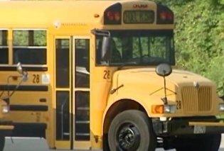 Αν έχετε γερά νεύρα δείτε το βίντεο: Ουρλιάζουν οι μαθητές καθώς εκτοξεύονται στον ουρανό του σχολικού λεωφορείου  - Κυρίως Φωτογραφία - Gallery - Video