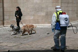 Κορωνοϊός νέα έρευνα: Η νυφίτσα και οι γάτες κολλάνε πιο εύκολα από τους σκύλους και τις πάπιες - Κυρίως Φωτογραφία - Gallery - Video