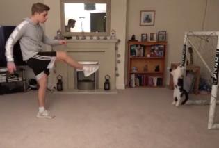 Γάτος τερματοφύλακας: Απίθανο βίντεο με τον «Νικοπολίδη» των αιλουροειδών να αποκρούει & το internet να «τρελαίνεται» (Βίντεο) - Κυρίως Φωτογραφία - Gallery - Video