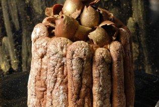 Ο Στέλιος Παρλιαρος μας φτιάχνει μία εντυπωσιακή τούρτα - Σαρλότ σοκολάτας με ρούμι - Κυρίως Φωτογραφία - Gallery - Video
