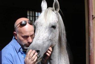 Ηλίας Νικολακόπουλος: Ο κτηνίατρος που φροντίζει τα 270 άλογα του Σουλτάνου του Ομάν – «Μια χώρα βγαλμένη από παραμύθι» (Φωτό)  - Κυρίως Φωτογραφία - Gallery - Video