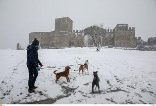 Καρέ καρέ τα χιόνια σε Θεσσαλονίκη, Διόνυσο, Φθιώτιδα - 100 φωτογραφίες με το πανέμορφο λευκό του ξαφνικού χειμώνα - Επιτέλους! (φωτό & βίντεο) - Κυρίως Φωτογραφία - Gallery - Video