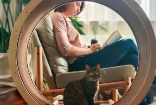 Την ονόμασαν 'loveseat' και είναι πολυθρόνα για δυο: Εσάς και τον γάτο σας - Οι designers έβαλαν τροχό με ροδάκια δίπλα στο κάθισμα σας! Εντυπωσιακό (φωτο)  - Κυρίως Φωτογραφία - Gallery - Video