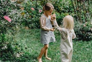 Σπύρος Σούλης: Αυτά είναι τα 6 φυτά που θα «οχυρώσουν» το σπίτι μας από τα κουνούπια - Ποια τα tips που μας δίνει; - Κυρίως Φωτογραφία - Gallery - Video