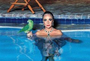 Όταν ο Helmut Newton φωτογράφιζε την Elizabeth Taylor: Θεά στην πισίνα με τα Bulgari σμαράγδια που της χάρισε ο 5ος της άντρας (φωτό) - Κυρίως Φωτογραφία - Gallery - Video
