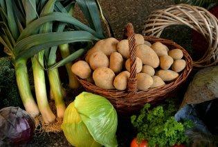 Ντίνα Νικολάου: Αυτά είναι τα λαχανικά του Σεπτέμβρη - από το κουνουπίδι και το μπρόκολο, μέχρι το πράσο & τα μανιτάρια  - Κυρίως Φωτογραφία - Gallery - Video