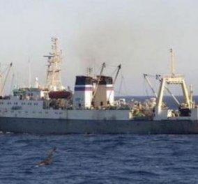 Ναυτική τραγωδία με τουλάχιστον 54 θύματα σε ναυάγιο αλιευτικού - Συγκλονιστικές εικόνες & βίντεο! - Κυρίως Φωτογραφία - Gallery - Video