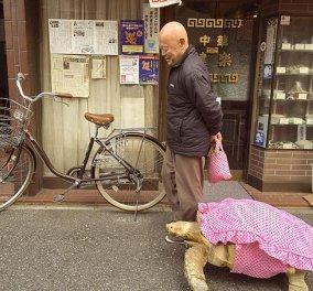 Ο πιο υπομονετικός άνθρωπος στον κόσμο είναι αυτός! Συμ-βαδίζει πλάι στην χελώνα του επί ώρες!  - Κυρίως Φωτογραφία - Gallery - Video
