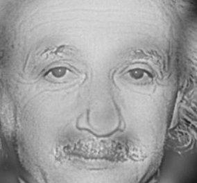 Οπτικό τρικ: Εσείς βλέπετε τον Αϊνστάιν ή τη Μέριλιν Μονρόε; (φωτό & βίντεο) - Κυρίως Φωτογραφία - Gallery - Video