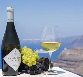 Made in Greece το Ασύρτικο: Το καλύτερο φθηνότερο λευκό κρασί του κόσμου από την Σαντορίνη - Κυρίως Φωτογραφία - Gallery - Video