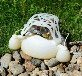 Τρισδιάστατα εκτυπωμένα ρομπότ πηδάει... σαν βάτραχος - Δείτε το - Κυρίως Φωτογραφία - Gallery - Video
