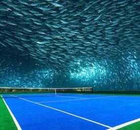 Πάμε τα παίξουμε τένις; Δείτε τα 20 πιο όμορφα γήπεδα του δημοφιλούς αθλήματος     - Κυρίως Φωτογραφία - Gallery - Video