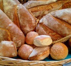 Μade in Greece το καινοτόμο βιολογικό ψωμί χωρίς συντηρητικά - Tο «ζύμωσαν» φοιτητές του ΤΕΙ Θεσσαλίας - Κυρίως Φωτογραφία - Gallery - Video