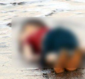 Στη φυλακή 4 Σύριοι για τον θάνατο του μικρού Aylan με απόφαση τουρκικού δικαστηρίου - Κυρίως Φωτογραφία - Gallery - Video