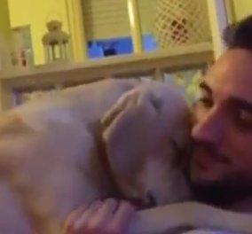 Βίντεο: Ο σκύλος που ζητά συγγνώμη και κάνει το Ίντερνετ να λιώνει - Θα τον λατρέψετε!  - Κυρίως Φωτογραφία - Gallery - Video