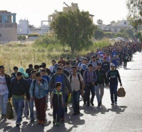 Good news: Δωρεά ύψους 750.000 ευρώ για την αντιμετώπιση της προσφυγικής κρίσης ενέκρινε σήμερα το διοικητικό συμβούλιο του Ιδρύματος «Σταύρος Νιάρχος»  - Κυρίως Φωτογραφία - Gallery - Video