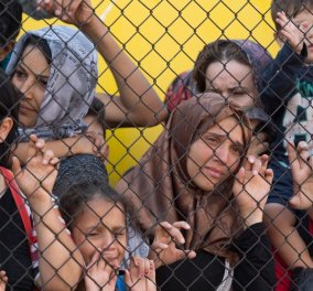 Γερμανία απειλεί Ουγγαρία: Δεν θα σας δώσουμε λεφτά αν υψώνετε αγκαθωτά συρματοπλέγματα στους πρόσφυγες  - Κυρίως Φωτογραφία - Gallery - Video