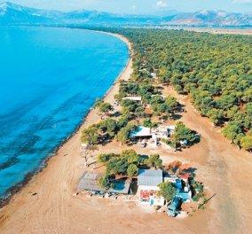 """Η Ελλάδα απαντά: """"Γιατί δεν έχω κατεδαφίσει 8 ταβέρνες στο Σχοινιά εδώ και 16 χρόνια"""" -Το Εθνικό Πάρκο & η απόφαση της Ε.Ε - Κυρίως Φωτογραφία - Gallery - Video"""