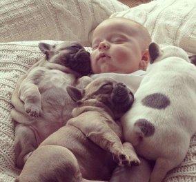Η ύπαρξη σκύλου στο σπίτι μειώνει τον κίνδυνο άσθματος στα παιδιά- Δείτε τι λένε οι ειδικοί!  - Κυρίως Φωτογραφία - Gallery - Video