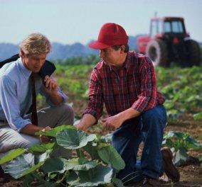 Μade in Greece η CropDiagnosis: «Κινητή» ελληνική εφαρμογή εντοπίζει παθογένειες στις καλλιέργειες & στα χωράφια σας  - Κυρίως Φωτογραφία - Gallery - Video