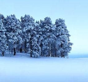 """Έκθεση φωτογραφίας με θέμα τον """"Χειμώνα"""" παρουσιάζεται στην καρδιά της Κυψέλης και στη Blank Wall Gallery - Κυρίως Φωτογραφία - Gallery - Video"""