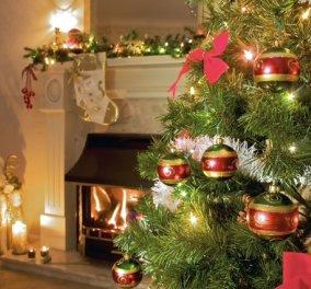 4 δισ. δολάρια ξοδεύτηκαν για Χριστουγεννιάτικα δέντρα στον κόσμο - Σε ποιο δεν πέφτουν οι βελόνες;  - Κυρίως Φωτογραφία - Gallery - Video
