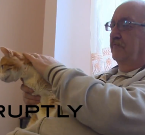 Βίντεο: Meet Γκάρφιλντ είναι η γηραιότερη γάτα στην Ευρώπη- 23 ετών & δεν το βάζει κάτω  - Κυρίως Φωτογραφία - Gallery - Video
