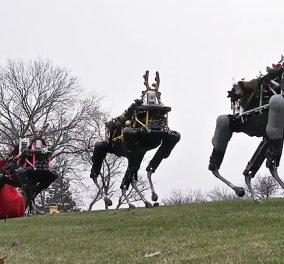 Δείτε το βίντεο με τους πρώτους ταράνδους - ρομπότ που τραβάνε το έλκηθρο του Άι Βασίλη!  - Κυρίως Φωτογραφία - Gallery - Video