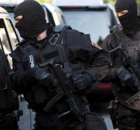 Προορισμός Γαλλία: Οι σερβικές αρχές εντόπισαν και συνέλαβαν κύκλωμα λαθρεμπορίας όπλων - Κυρίως Φωτογραφία - Gallery - Video