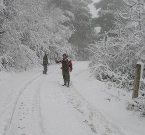 Σε λευκό κλοιό η χώρα - Δείτε φωτό από την Σκόπελο με... ένα μέτρο χιόνι - Κυρίως Φωτογραφία - Gallery - Video