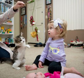 2 ετών κοριτσάκι έχασε το χέρι της από καρκίνο & υιοθετεί γατάκι που και εκείνο έχασε το ποδαράκι του!  - Κυρίως Φωτογραφία - Gallery - Video