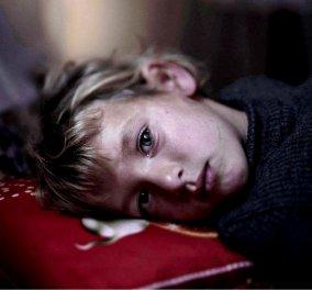 Παγκόσμια καμπάνια στο Διαδίκτυο: Το Νόμπελ Ειρήνης να δοθεί στους Έλληνες για την βοήθεια στους πρόσφυγες & τις συγκινητικές τους πράξεις  - Κυρίως Φωτογραφία - Gallery - Video