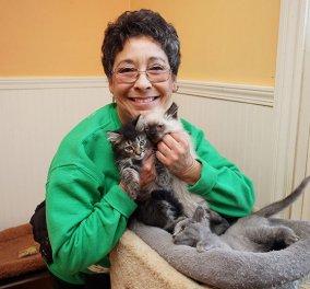 Πλούσια Αμερικανίδα ζει με 1.100 γάτες σε φάρμα - 28.000 γατιά μεγάλωσε σε 23 χρόνια - Κυρίως Φωτογραφία - Gallery - Video