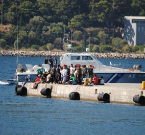 Good News: Ξεπερνούν ήδη τις 100.000 οι υπογραφές για το Νόμπελ στα ελληνικά νησιά που υποδέχονται πρόσφυγες - Κυρίως Φωτογραφία - Gallery - Video