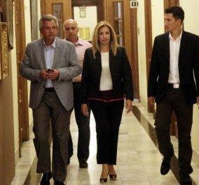 Φώφη Γεννηματά καλεί Κέντρο για τη δημιουργία νέας παράταξης με νέο αρχηγό  - Κυρίως Φωτογραφία - Gallery - Video