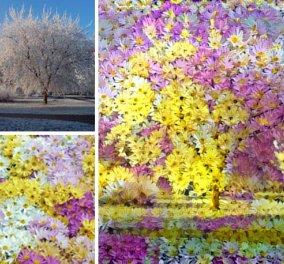 Ο μάγος της ψηφιακής ζωγραφικής αλλάζει την πρωτότυπη φωτογραφία σε έργο τέχνης - αριστούργημα - Κυρίως Φωτογραφία - Gallery - Video