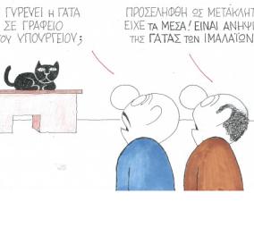 ΚΥΡ: Τι γυρεύει η γάτα σε γραφείο του υπουργείου; Προσελήφθη ως μετακλητή! Είχε τα μέσα... - Κυρίως Φωτογραφία - Gallery - Video