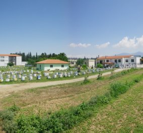 Good News: Το ΑΠΘ θα διαθέσει κήπους σε 150 Θεσσαλονικιούς για να καλλιεργήσουν τα δικά τους λαχανικά - Κυρίως Φωτογραφία - Gallery - Video