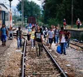 34.000 Πρόσφυγες εγλωβισμένοι στην Ελλαδα - κλειστη - λουκέτο η Ειδομένη - Αθλια η εικόνα στον Πειραιά - Κυρίως Φωτογραφία - Gallery - Video