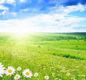 Ανοιξιάτικος o καιρός την Πέμπτη - Ανεβαίνει η θερμοκρασία - Κυρίως Φωτογραφία - Gallery - Video