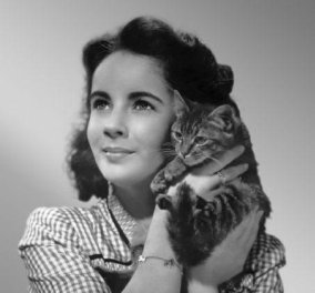 Vintage pics - Ελιζαμπεθ Τέϊλορ η πιο φιλόζωη του Χόλιγουντ: Αγκαλιά με γατάκια & σκυλάκια συνέχεια  - Κυρίως Φωτογραφία - Gallery - Video