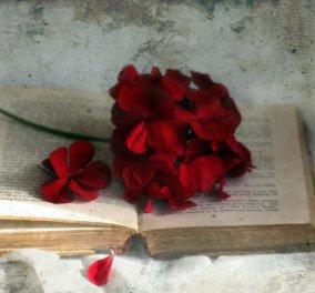 """Δωρεάν βιβλίο με το eirinika: Κερδίστε το απίθανο """"Σε ακανόνιστο ρεύμα """" της Έφης Βενιανάκη - Κυρίως Φωτογραφία - Gallery - Video"""
