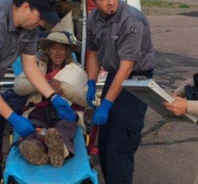 72χρονη έγραψε HELP με ξύλα σε δάσος της Αριζόνα & την έσωσαν μετά από 9 μέρες!   - Κυρίως Φωτογραφία - Gallery - Video