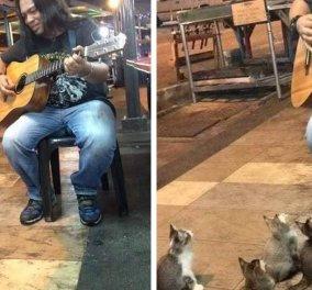 Συγκινητικό: 4 μουσικόφιλες γάτες ακούν ένα μουσικό του δρόμου & εντυπωσιάζονται - Όλοι οι άλλοι τον αγνόησαν - Κυρίως Φωτογραφία - Gallery - Video