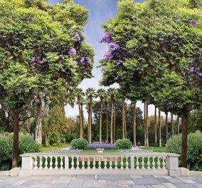 Good News: O Εθνικός Κήπος φιλοξενεί το Athens Gardens Festival - Από 3 έως 5 Ιουνίου - Κυρίως Φωτογραφία - Gallery - Video