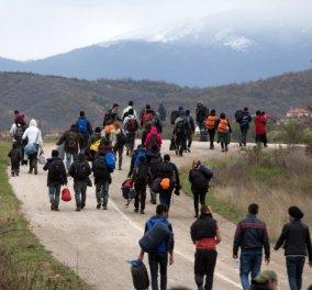 Ειδομένη: Φοβισμένοι πρόσφυγες φεύγουν με τα πόδια από τον καταυλισμό - Δεν θέλουν να πάνε σε δομές φιλοξενίας - Κυρίως Φωτογραφία - Gallery - Video